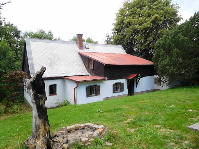 Chalupa Janov 178