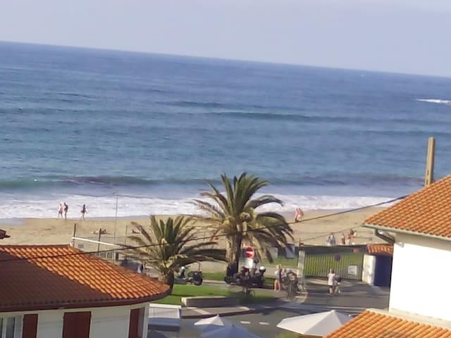 Magnifique appartement à 50 m de la grande plage