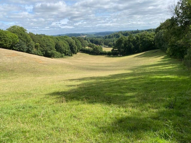 Field in Surrey Hills-Bring your OWN Tents-or hire