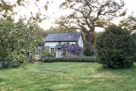 Little Buckland Cottage