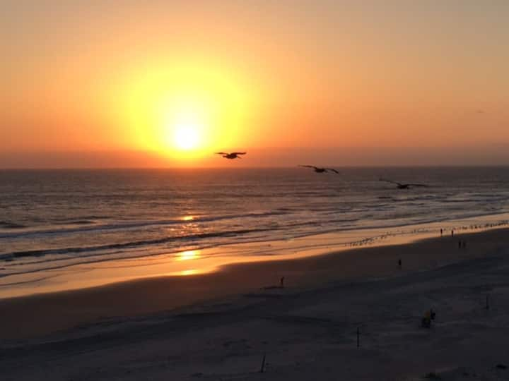 Ocean front condo in N Beach, New Smyrna Beach, FL