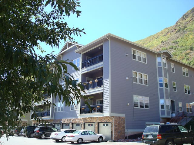 SHARED 2BD/2BA APARTMENT IN GLENWOOD SPRINGS