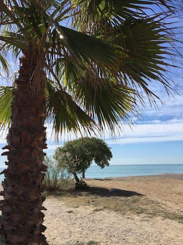 Apartamento bajo playa Moncofar