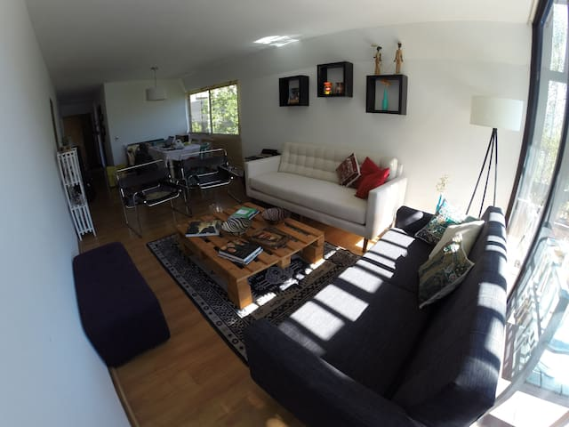 Beautiful apt, excellent location, private room - Providencia