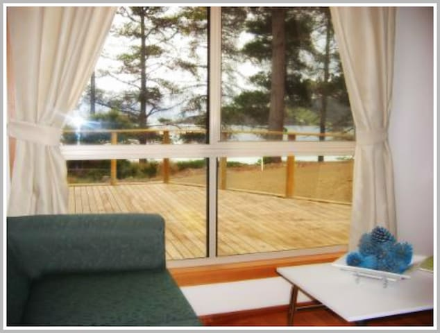 the view from one of the living areas