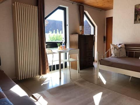 Schöne, helle 45qm große 1 Zimmer Wohnung