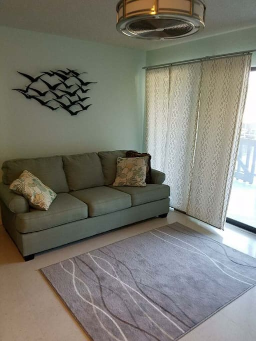 Living room - sofa folds out to queen bed