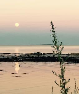 Sunrise coffee 50 feet from ocean - Rye - Condominio
