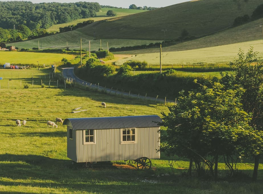 The Chapel and the Gallery Shepherd huts within the beautiful South Downs National Park