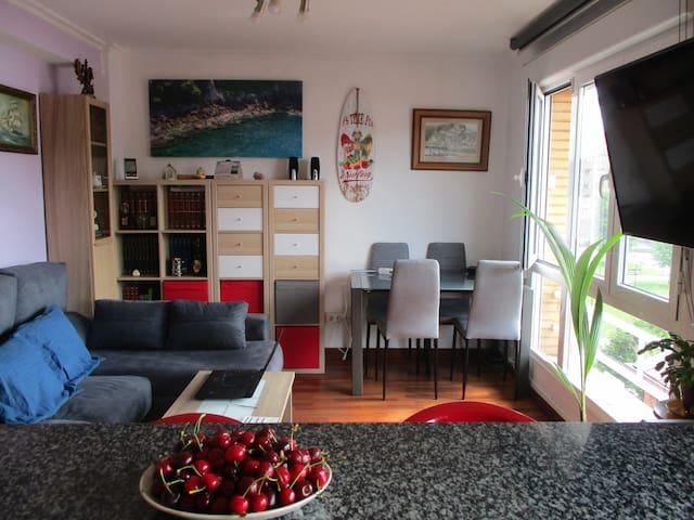 GIJON APARTAMENTO JUAN DE AUSTRIA (3 dormitorios)
