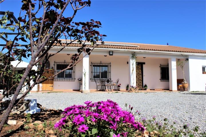 "Casa rural ""Villa Los Leones"" - Moraleda de Zafayona - Naturstuga"