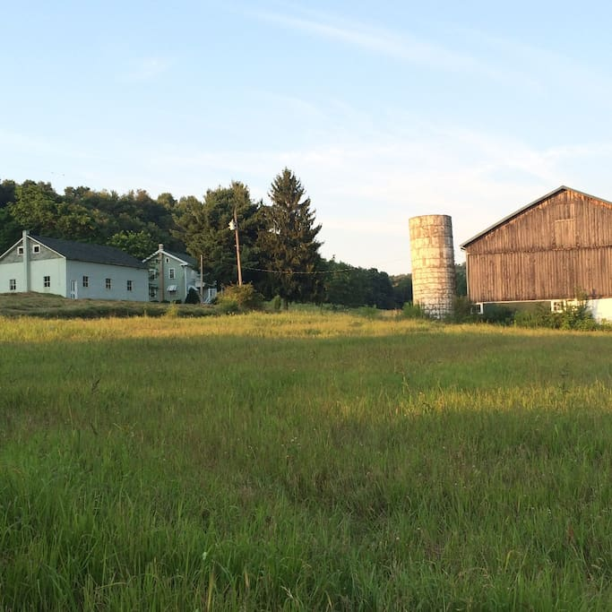 West side view of property. The barn and farm land is open for exploring!
