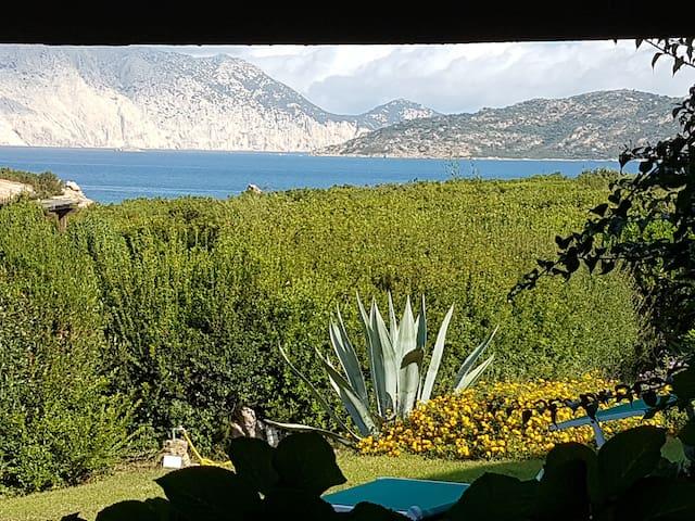 Coda Cavallo, beach 150m, mooring, boat trips