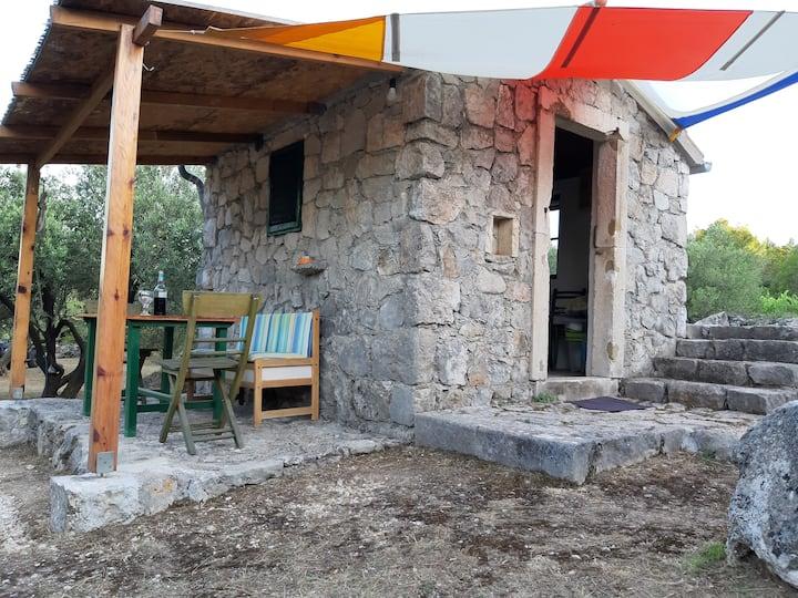 Robinson house Krunica