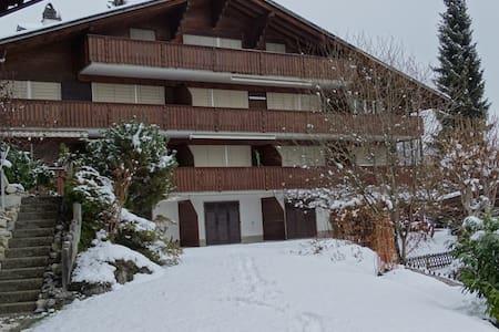 Spacious 6-bed apartment/Ferienwohnung near Gstaad - Zweisimmen