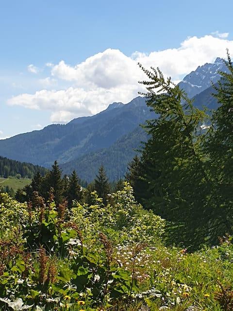 Un piccolo ovetto tra le montagne