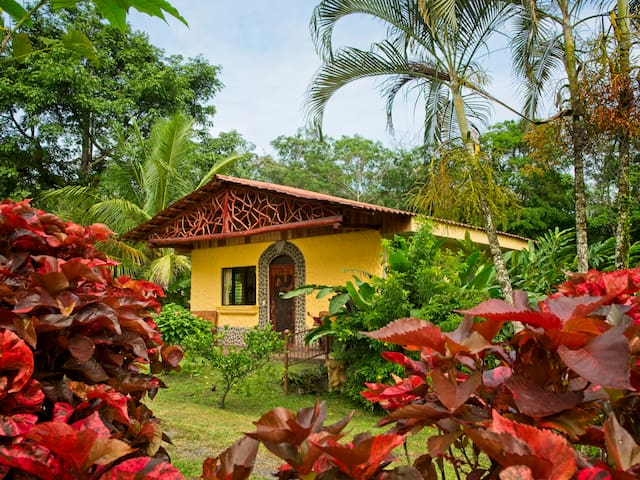 Colibri Rainforest Casita with Hot Springs
