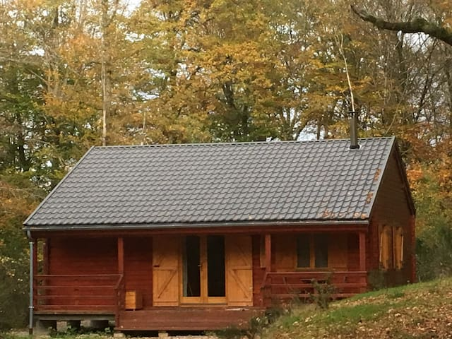 'the forest in the stars' cabin
