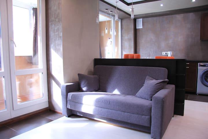 Designed studio in Krasnaya Presnya