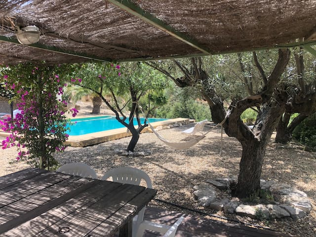 The hammock tree is hung between two olive trees in the shade