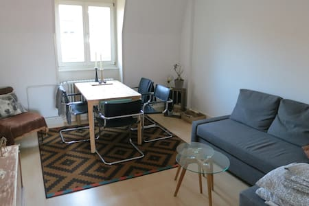 Stylish apartment in KleinBasel, close to Messepl. - Basel