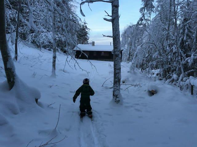 Gå på ski fra hytteveggen.
