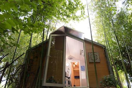 Lodge inside the bamboo bush