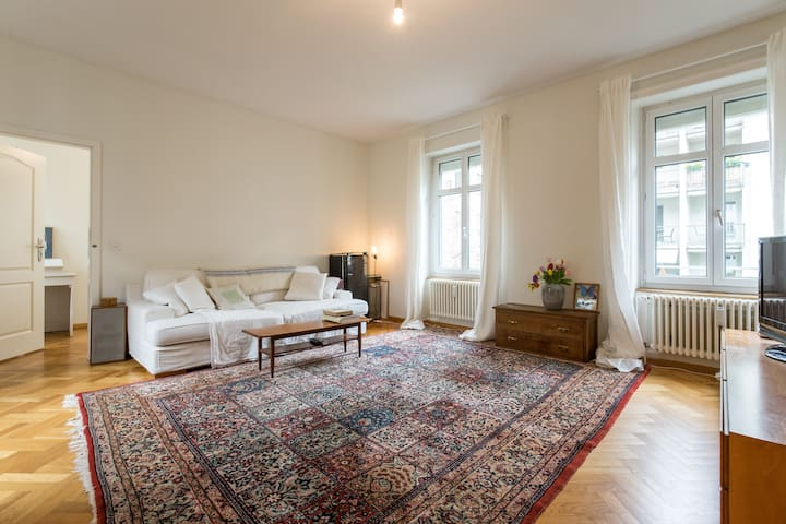 Amazing Loft w 2 seperate bedrooms - Basel - Apartment