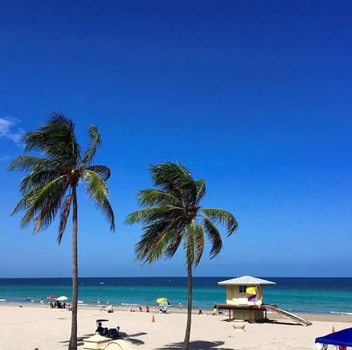 Apartments For Rent In Hollywood, Florida