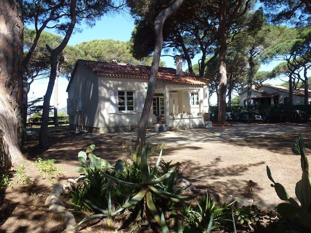 Villa sous les pins - à  150 mètres de la plage - Hyères - Villa