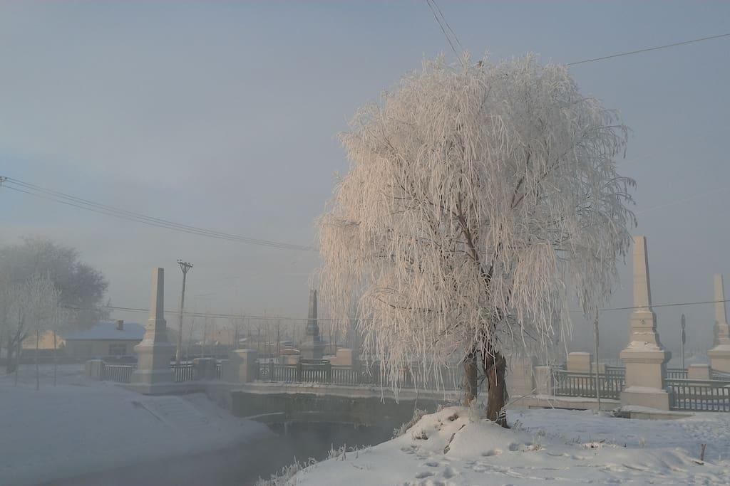 垂柳雾凇、积雪