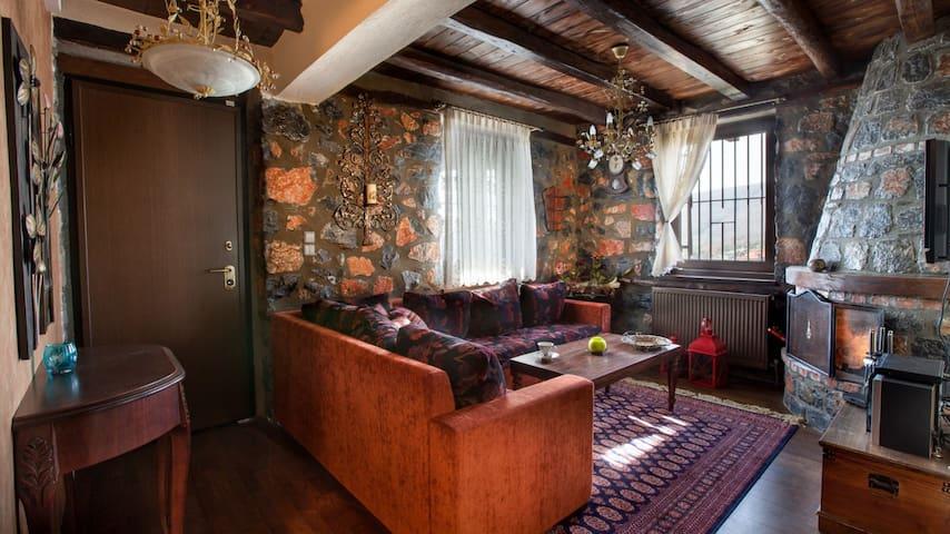 Πέτρινο ζεστό διαμέρισμα στον παλιό άγιο Αθανάσιο! - Agios Athanasios - Appartamento
