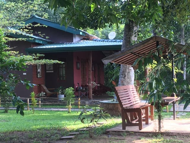 Elephants Nest Safari Lodge