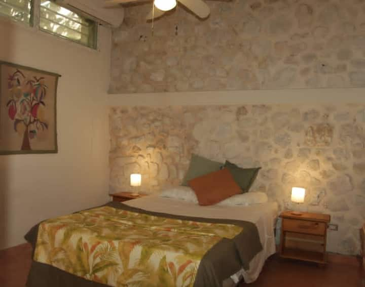 Cozy one bedroom apartment in Pacot