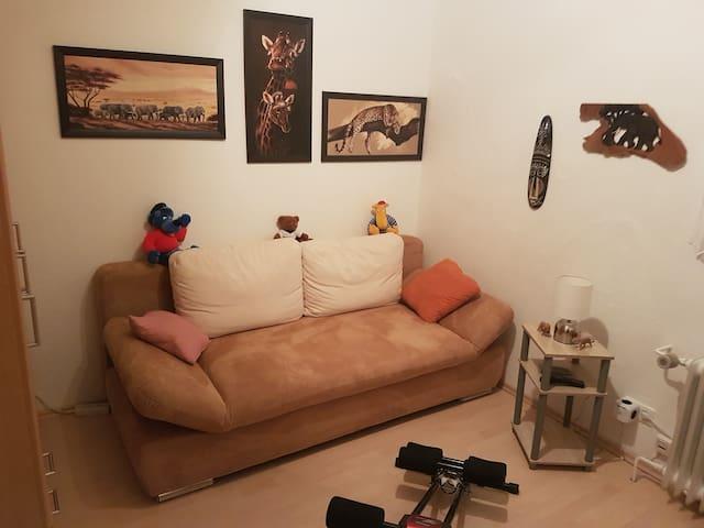 kleines Zimmer mit ausziehbarem Sofa für 2 Personen