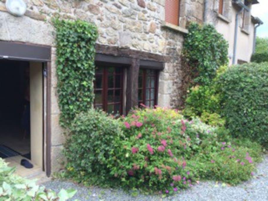 Kitchen window and front door