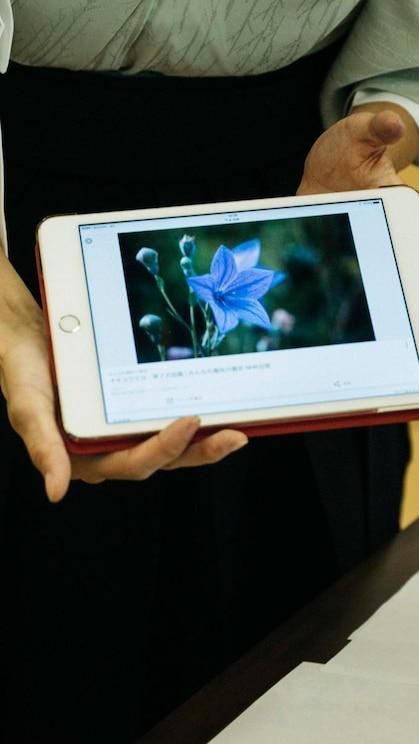 顯示體驗策劃人提供的全螢幕圖片