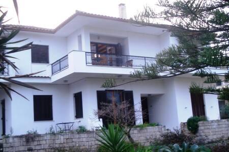 Ioulia-Tsilivi apartment - Planos - Lejlighed