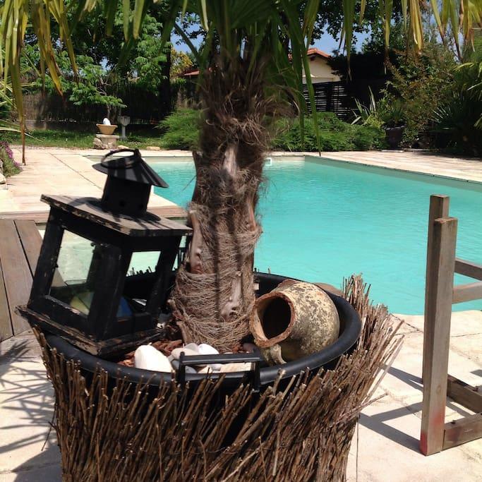 Autour de la piscine qui vous est accessible aux beaux jours .