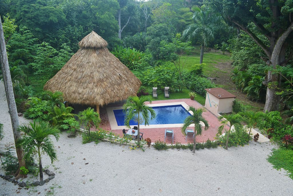 Our swimming pool and tiki hut are the perfect tropical combination to simply relax.