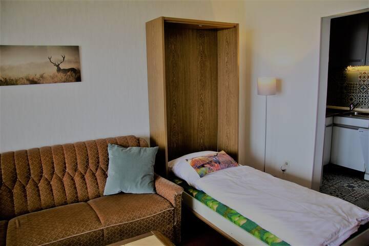 Wohnzimmer mit Schrankbett (hier ausgeklappt)