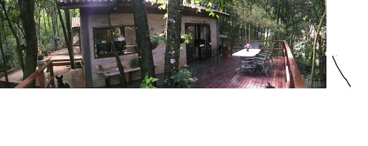 JUNGLE House , CASA na FLOreSTA