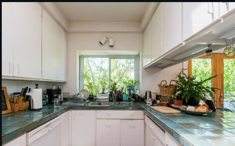 Kitchen with a green outlook - all the plants indoors are living and thriving. Instant hot water tap for a quick cuppa tea