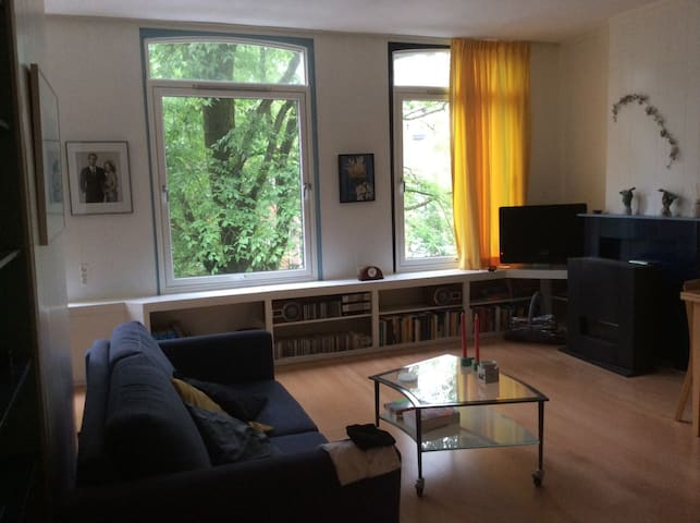 comfortable and bright appartment