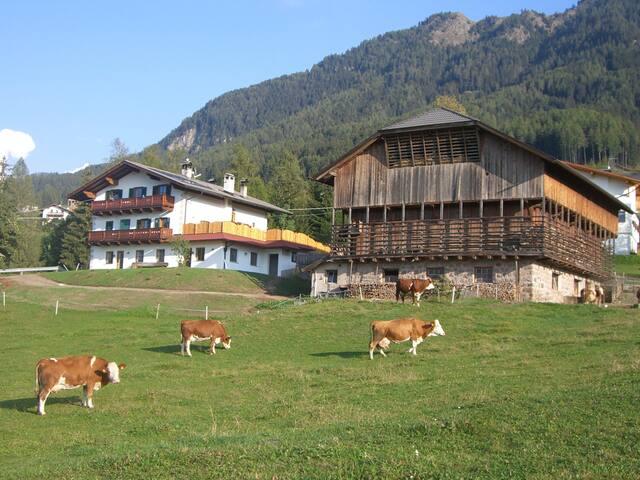 Kompatscherhof, Urlaub auf dem Bauernhof