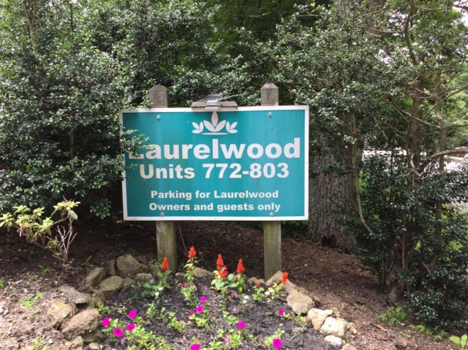 Welcome to Laurelwood!