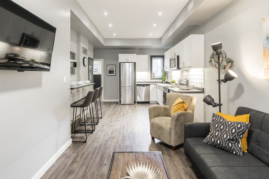 Freshly Renovated Apartment With Open Concept Living Room and Kitchen