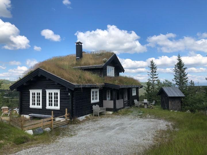 Rustic moutain cabin