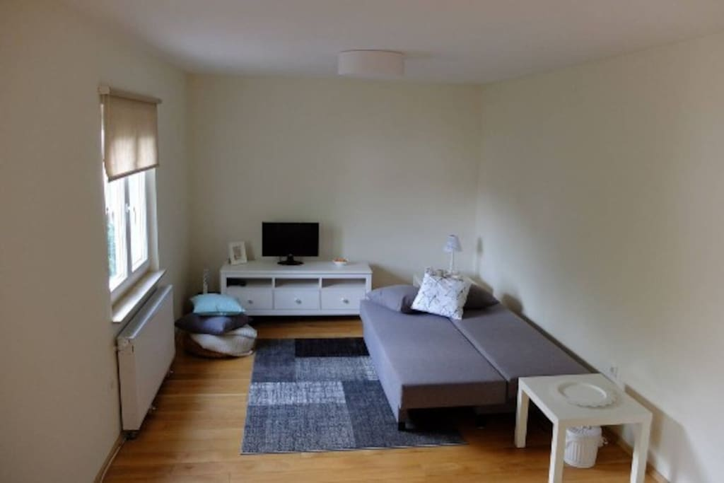 Wohnzimmer 1. OG mit Schlafgelegenheit