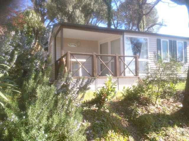 Golfe ST TROPEZ MOBIL-HOME CAMPING 4 **** GASSIN